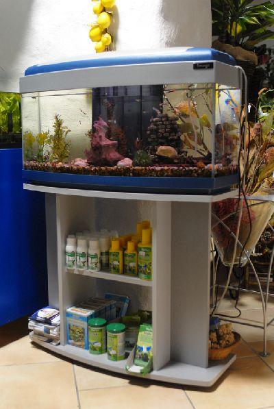 Patrizia crisponi manutenzione e gestione acquari for Accessori per acquari