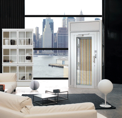 DomusLift Luxury