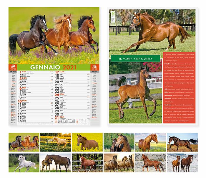 Esempio di Calendario Olandese